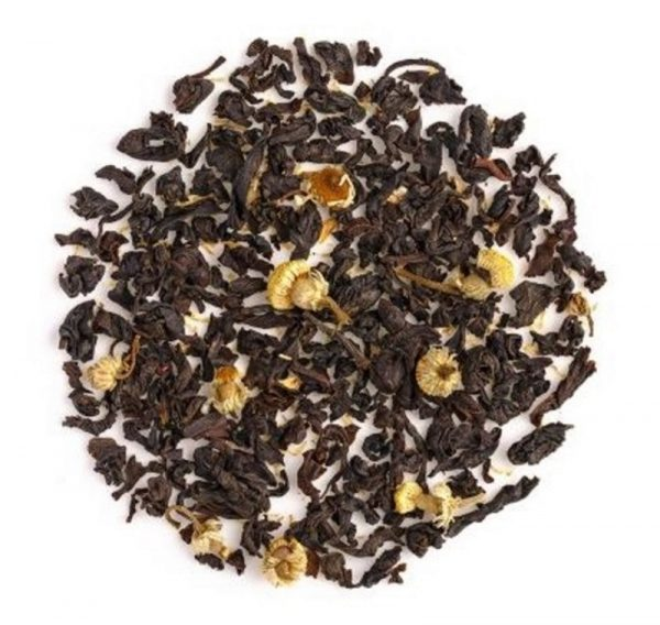 Cosy Chamomile - Absolutea Blend